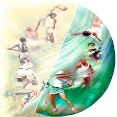 rhodiola sport